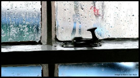 window-w900-marco-zak-flickr